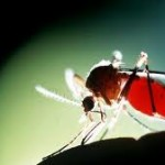 Penyelidikan Epidemiologi DBD