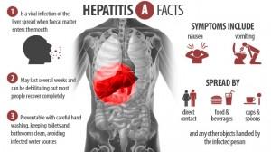 epidemiologi hepatitis A